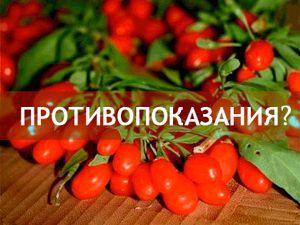 Кому противопоказаны ягоды годжи