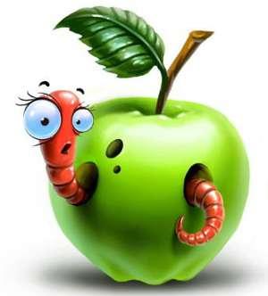 Как правильно выбрать яблоки
