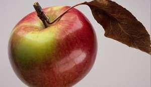 сколько калорий в зеленых, красных яблоках