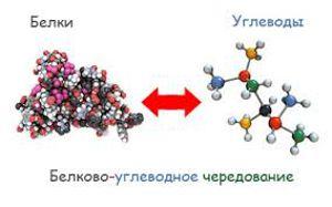как правильно чередовать белки и углеводы