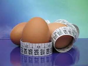 Употребление яиц в диетах при ращете их калорийности