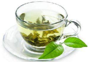 польза и вред от белого чая
