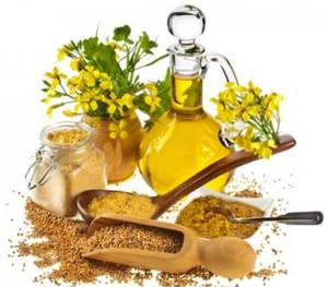 Польза и вред горчичного масла