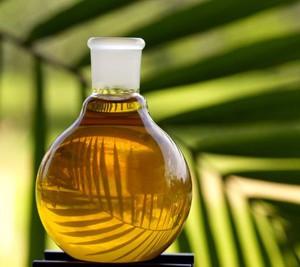 польза и вред пальмового масла