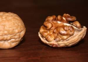 Грецкий орех в диетологии
