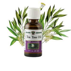 Как правильно принимать австралийское чайное масло