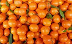 Кулинарная сочетаемость мандарина