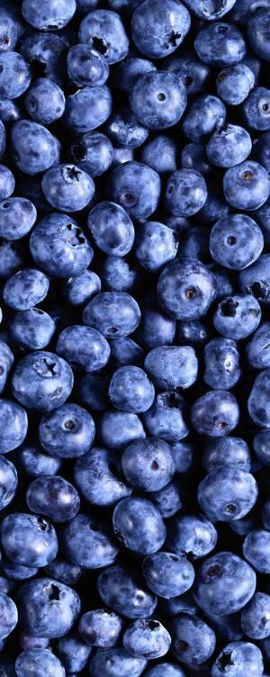 Лечебные свойства и витаминный состав черничной ягоды