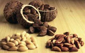 Польза и вред бразильского ореха