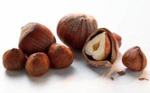 Польза и вред лесного ореха фундука