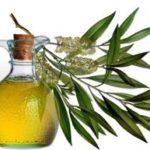 Эфирное масло чайного дерева для кожи, волос, отбеливания зубов, от прыщей, грибка ногтей