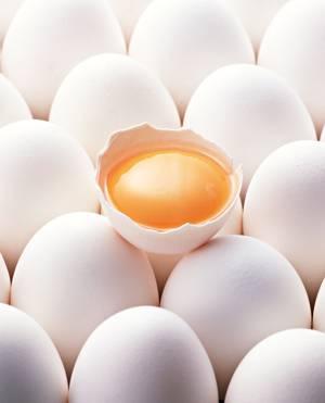 Каковы полезные свойства куриных яиц
