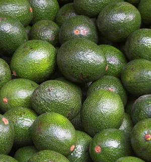 Как правильно выбрать спелый плод авокадо