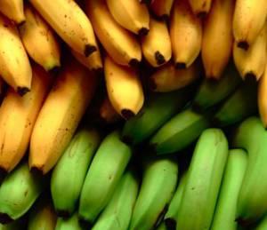 Полезные свойства и химический состав бананов