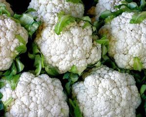 Полезные свойства и химический состав цветной капусты
