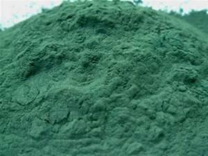 Химический состав водоросли