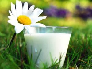 Химический состав и кулинарное применение козьего молока