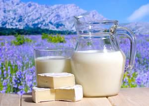 Чем полезно козье молоко и что из него можно приготовить