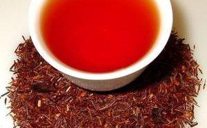 Польза чая ройбуш и его возможный вред