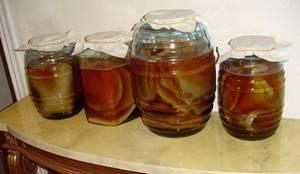 Здесь вы узнаете о пользе и вреде чайного гриба больше, чем из Википедии