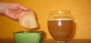 Как правильно ухаживать за чайным грибом в домашних условиях