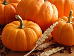 Калорийность мякоти, семян, сока, масла тыквы, а также различных видов ее приготовления