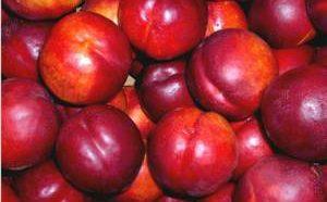 Исчерпывающая информация о калорийности нектаринов
