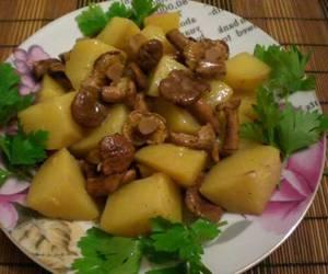 Калорийность и рецепт лисичек в сметане с картошкой
