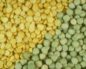 Калорийность и химический состав гороха
