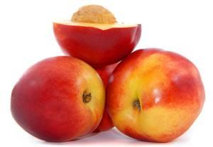 Нектарин - это гибрид персика и ...