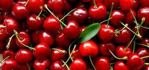 Полезные свойства вишни и возможные противопоказания