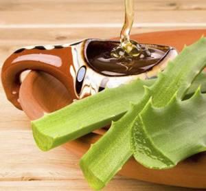 Рецепты и способы применения алоэ с медом