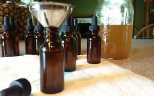 Полезные и лечебные свойства, инструкция по применению и противопоказания спиртовой настойки прополиса