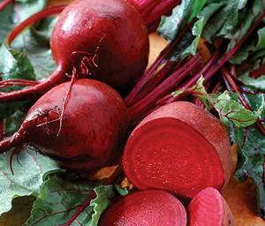 Полезные и лечебные свойства, противопоказания сырой и вареной красной свеклы, а также свекольной ботвы и листьев