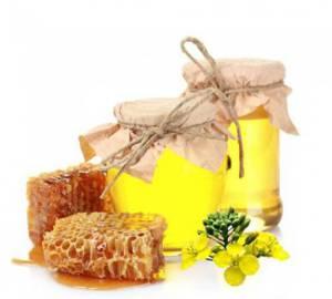 Полезные свойства рапсового меда