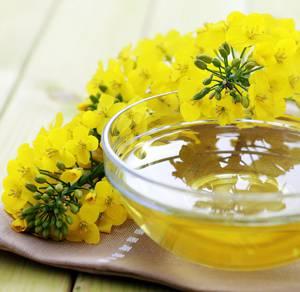 Польза и возможный вред рапсового меда