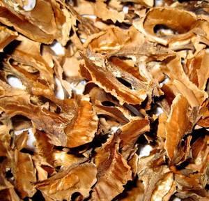 Лечебные свойства и возможные противопоказания перегородок грецкого ореха