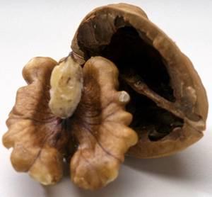 Лечение различных болезней перегородками грецкого ореха