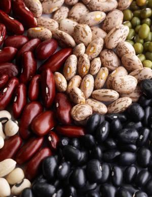 Полезные свойства бобов и применение бобовых продуктов для похудения