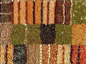 Полезные свойства для похудения и противопоказания зерен, семян и семечек