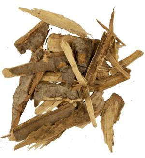 Полезные свойства и возможные противопоказания коры осины