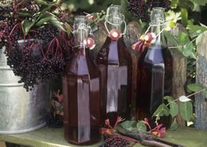 Полезные свойства и простой рецепт приготовления настойки из черноплодной рябины (черноплодки) на водке в домашних условиях