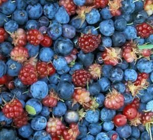 Полезные свойства и противопоказания к применению различных ягод