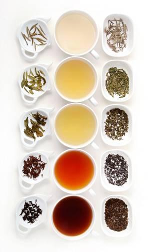 Полезные свойства и противопоказания различных видов чая