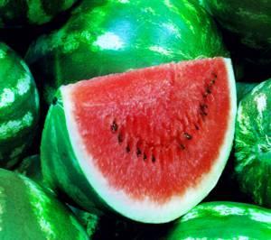 Полезные свойства и химический состав арбуза