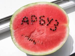 Польза и возможный вред арбуза для здоровья организма