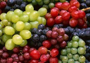 Польза и возможный вред винограда для организма человека