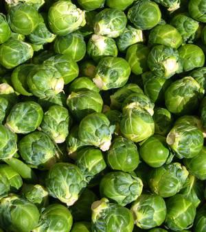 Польза и возможный вред для здоровья брюссельской капусты