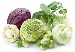 Польза и возможный вред для организма различных видов капусты