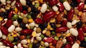 Польза и возможный вред различных бобов